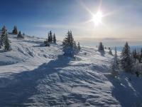 Ski tracks in afternoon sun